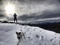 Twin Peaks Alaska